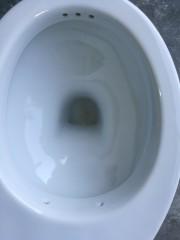 WC con funzione bidet FLY